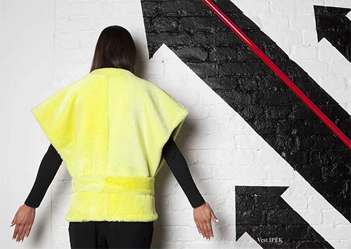 ONAR-yellow-vest